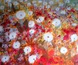 Dandelion variation