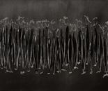 Dunkle Gestalten, acrylic on canvas, 50 x 100 cm, 2013