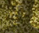 CaMAOuflage