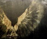 The Bright Angel (L'Angelo luminoso)