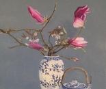 Chinese Magnolias