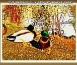 The Emerald Duck Pair