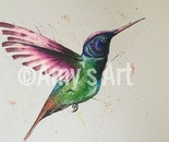 Harriet the hummingbird