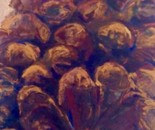 Pine Cone 6