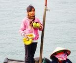 fruit vendors in Along Bay