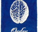 Order Blue Print