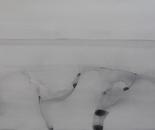 Enlightenment2015-04-65378 paperboard acrylic color 150cmx95cm.jpg