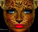 Robin Wagenvoort - Cheetah Face