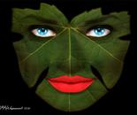 Robin Wagenvoort - Leaf Face