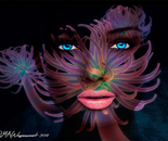 Robin Wagenvoort - Coral Face