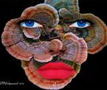 Robin Wagenvoort - Turkey Tail Mushroom Face