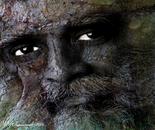 Robin Wagenvoort - Tree Face