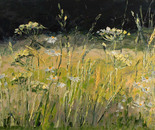 Edge of the meadow