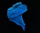 The blue headscarf