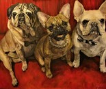 Three Dogs Commission