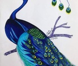 The Poised Peacock