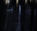 Nature Mysticism 7