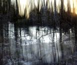 Nature Mysticism 9