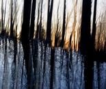Nature Mysticism 10