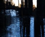 Nature Mysticism 11