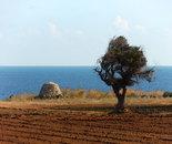Puglia's Watercolor