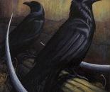 Two Ravens.