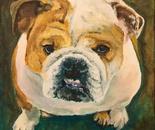 Stella, Herman's Bulldog