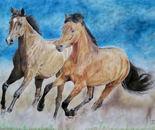 Mustangs: Running Wild