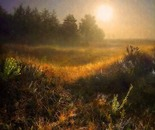 nebbia di mattina