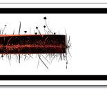 radici elettriche