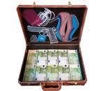 Miss secret agent suitcase