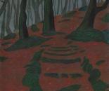 Broumov Forest