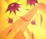 Sunflower-Phantasm