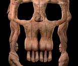 Skull (Male)