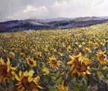 """Sunflowers field"""