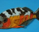 Tobaco fish