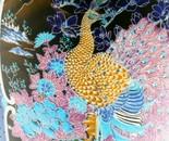 Peacock in Parade