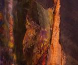 Tie Dye Crevice