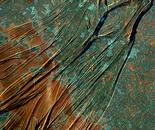 Textured Verdigris 1