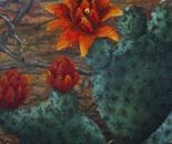 Jardim do Sertão (Floral 6)