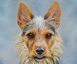 Terry portrait