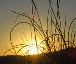 Orly Aviv - Sunshine 5