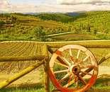 Chianti Wheel