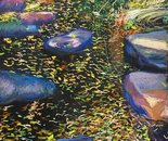 Leafy pond