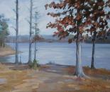 Falls Lake (3)