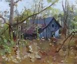 Hut in Woods