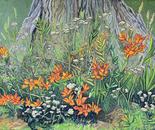 Flores al pie de un Cohiue