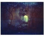 moments at dusk