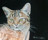 oil painting of cat by rohit