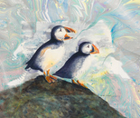 Puffins Squall